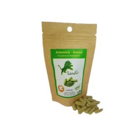 La plante miraculeuse, l'Artemisia chez vous. Faire entrer d'Artemisia dans votre consommation quotidienne est un atouts et un allié très important pour votre santé. Que ce soit en gélules, en infusettes ou en tisane, rien a dire sur ses miracles par le renforcement du système immunitaire et la lutte contre les maladies virales -- Un véritable anti palu -- Un anti ballonnement -- Un anti constipation -- Un accompagnateur de régime de ventre plat.